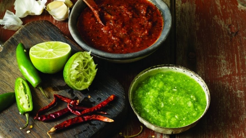 salsa and other essential mexican recipes