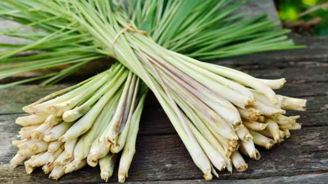 lemongrass recipes
